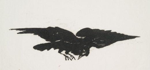 Corbeau / Édouard Manet