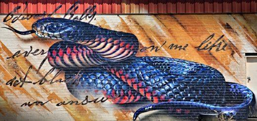 Snake, street art, Ausrtralia