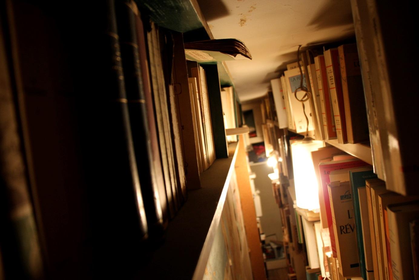 Dans la bibliothèque de Robert Bonnaud (Photo. Daniela Scancella, 2014)