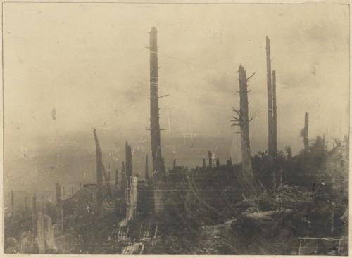 Champ de bataille du Linge. Auteur : Service des Monuments historiques, 1920 (Denkmalarchiv, DRAC Alsace)