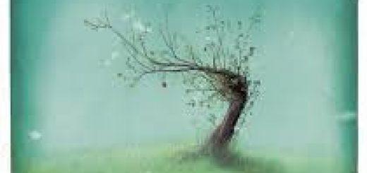 arbre-dautremer
