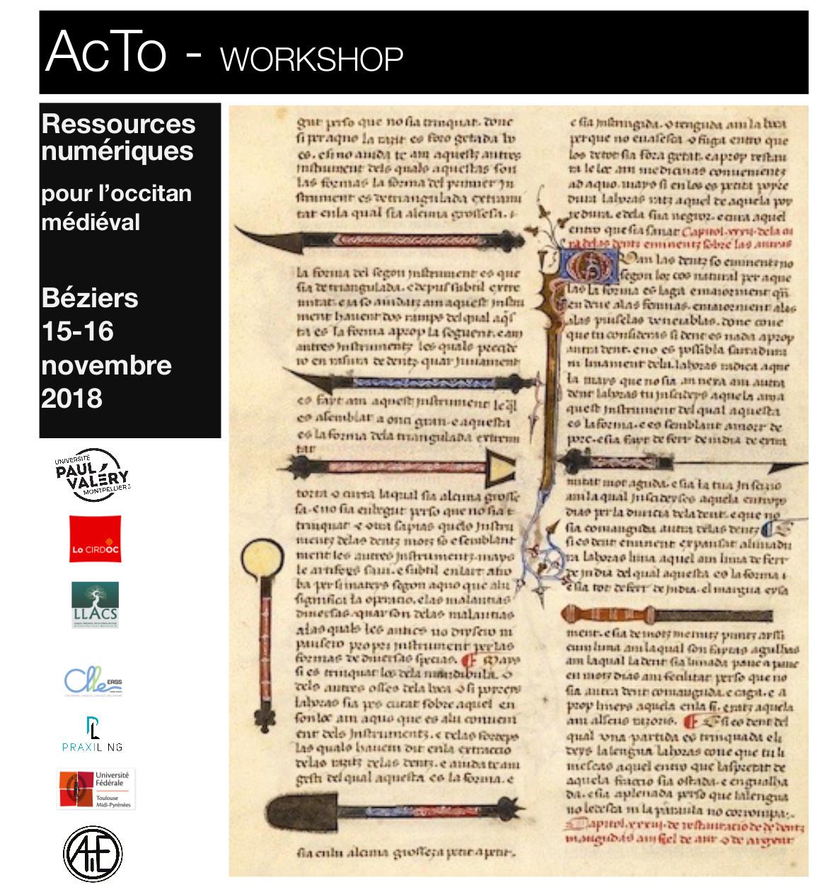 Workshop AcTo Béziers  15-16 novembre 2018 au CIRDOC