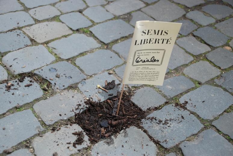 2010Mars strasbourgCREP semis-liberte3 guerilla gardening