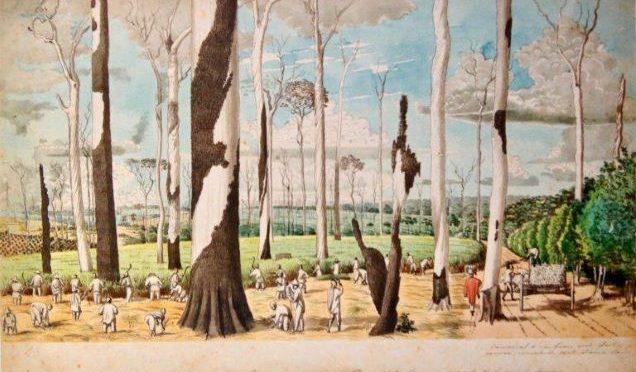 Séminaire II – Jacques Leenhardt –                    Hercule Florence (1804-1879) peintre explorateur au Brésil – 4 décembre 2018