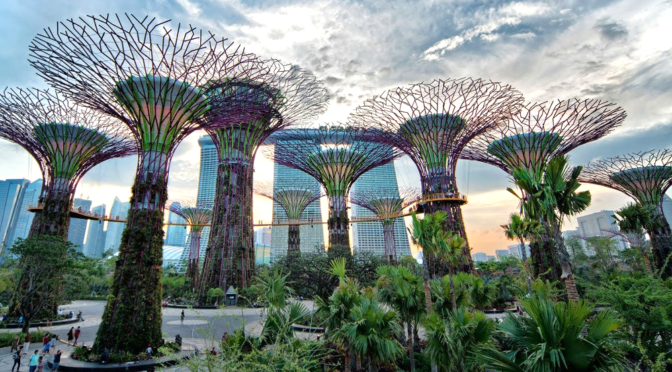 Les smarts cities : Gardens by the bay à Singapour