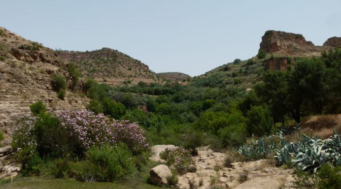 vallée de la Tafna
