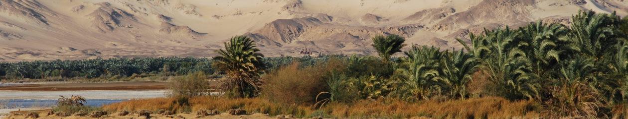 Repenser le Sahara médiéval (XIIIe-XVIe siècles). Documents connus, lectures inédites.