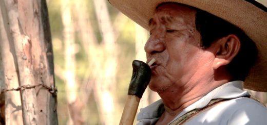 El deterioro de los saberes locales y culturales por el conflicto paramilitar en el Caribe Colombiano