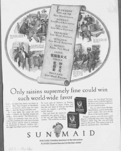 "Fig.44 ""Only Raisins supremely fine could win such world-wide favor"". Saturday Evening Post, 6 août 1927. Source : J. Walter Thompson Company. 35mm Microfilm Proofs, 1906-1960 and undated. Reel 36."