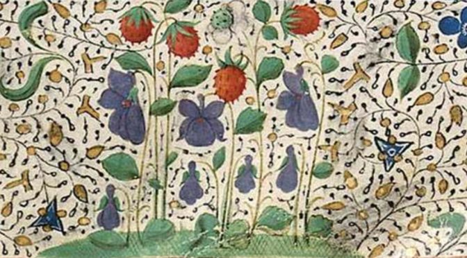Job offer : Postdoctoral Researcher in Medieval Manuscript Studies