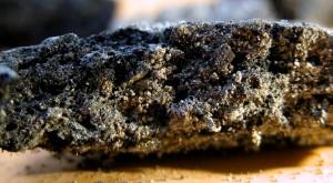 Pâte céréalière carbonisée, 10e s. (© M.-P. Ruas)