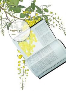 Montage photographique d'une image de fleur passant sous différent supports