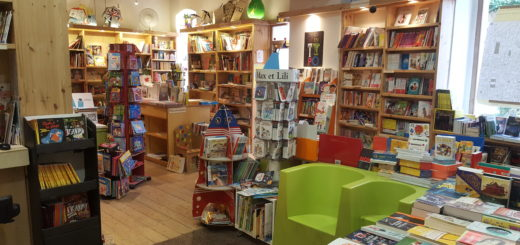 Rayon de la librairie Actes Sud à Arles