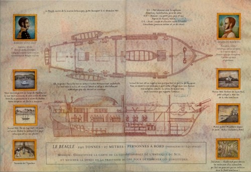 Fig.16 : SIS, 2003, p.14-15