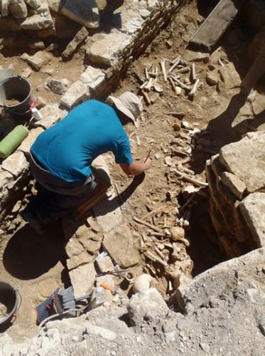 Fig. 2 — Vue des ossements tapissant le fond de l'ossuaire dans la structure semi-enterrée