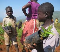Vers une bonne gouvernance des ressources naturelles dans la région des Grands Lacs africains
