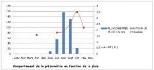 Figure 2 - Relation entre les précipitations et les variations piézométriques
