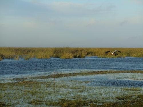 Vue de la lagune