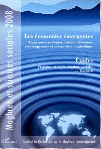 Maghreb et sciences sociales 2008