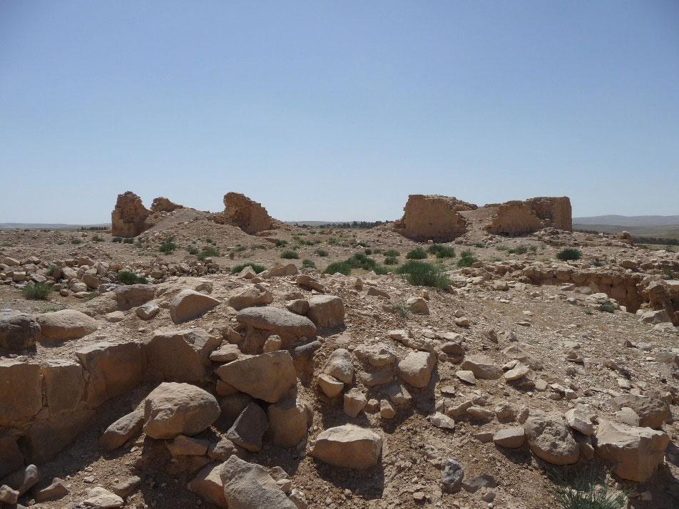 Vue d'ensemble du site (2013, ©Mission K. al-Dusaq/Vigouroux)