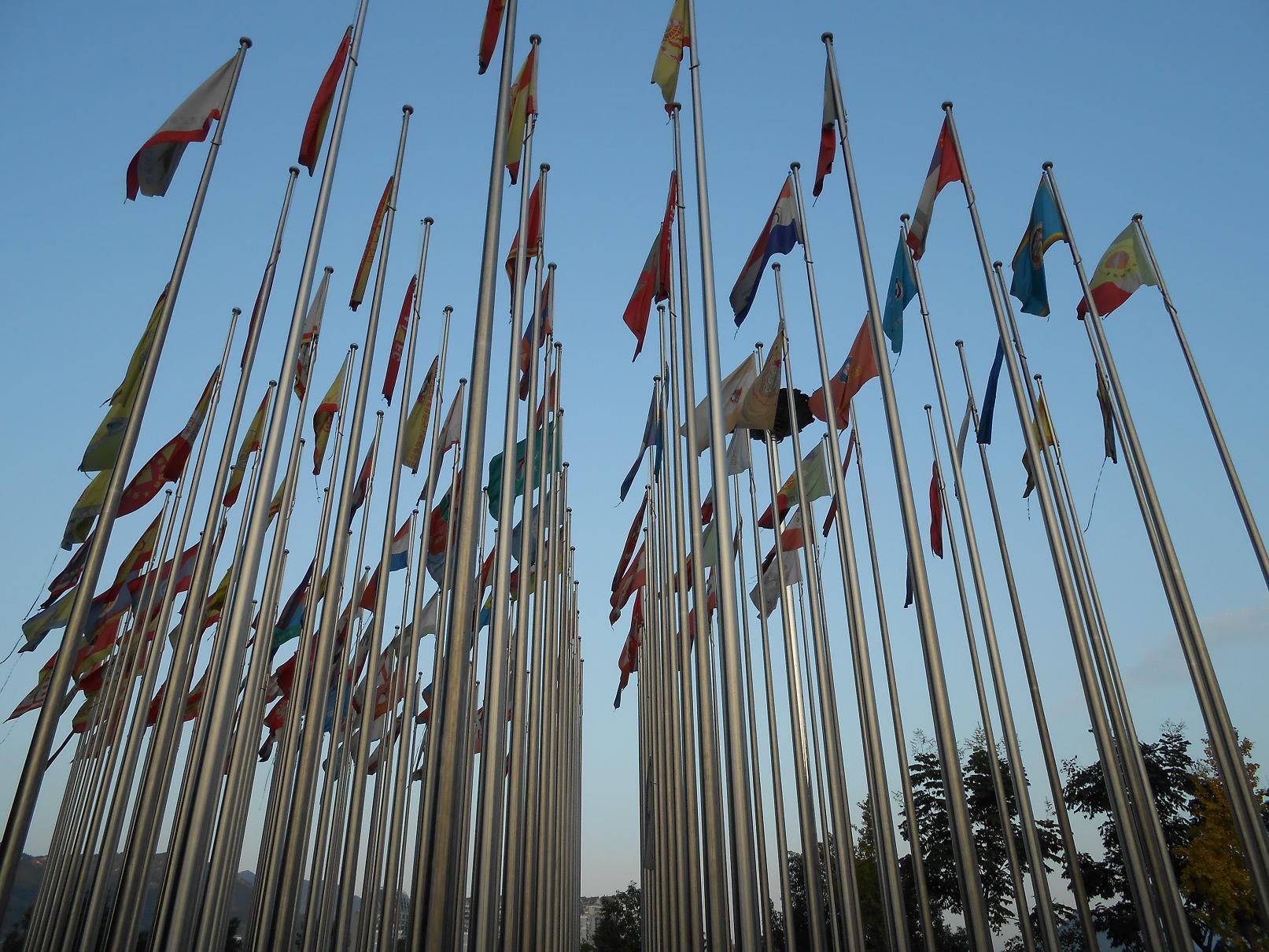 Drapeaux des associations de Qingtian dans le monde