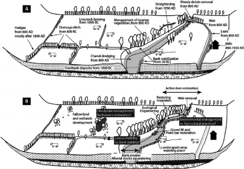 Fig-5-Schematic-sketch-of-the-legacy-and-the-restoration-projects-for-the-small-rivers
