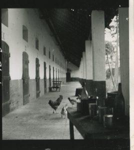 Années 1950, Ingeborg de Beausacq/Archives historiques du CNAM.
