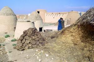 Silos et galettes de combustibles (région d'Alep, Syrie, 1973)