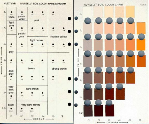 Fig. 3 : page 7/5 YR du Munsell Soil Colour Chart.