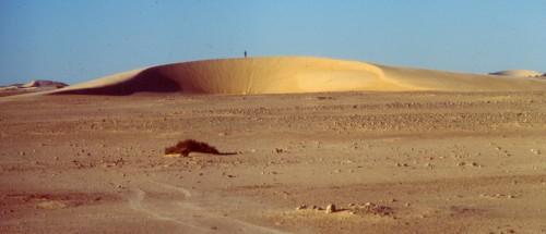 Figure 6 : Barkhane, dite « Dune Coursin » près de Boulanouar (NW de la Mauritanie). Suivie depuis les années 1950, elle fournit des informations sur un demi-siècle de déplacements de la barkhane. A : vue verticale (Image Google Earth du 18/02/1984) ; B : vue au sol en 1996 (photo Yann Callot).