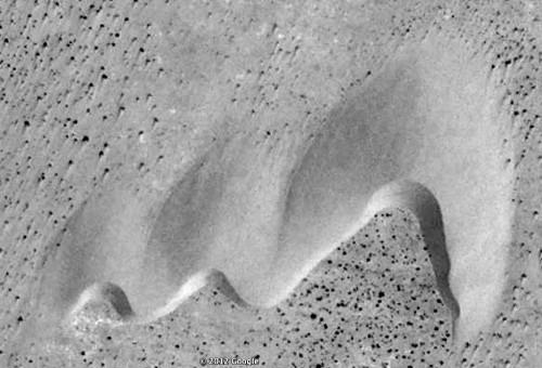 Figure 7 : comment se forme une barkhane dissymétrique : deux dunes plus petites, donc plus rapides que celle de droite, la rejoignent et commencent à se fondre en elle. Largeur de la dune, environ 250m. Image Google Earth, Région de Tafaya (Maroc).