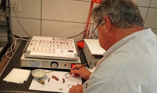 Fig. 7 : Michalis Sakalis, technicien du Fitch Laboratory, fabrique les lames minces.