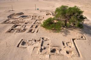 Figure 6. L'habitat islamique dégagé en 2010 autour de l'Arbre de Vie (cliché: S. Aradi)