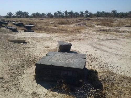 Fig. 8 : bases de colonne achéménides sur le site de Sang-e Siyah situé dans la région de Borazjan (province de Bushehr, sud-ouest de l'Iran).