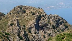 Fig. 4 : L'habitat établi au sommet du Kastro (fig. 2 n°111) (F. Gaignerot-Driessen).