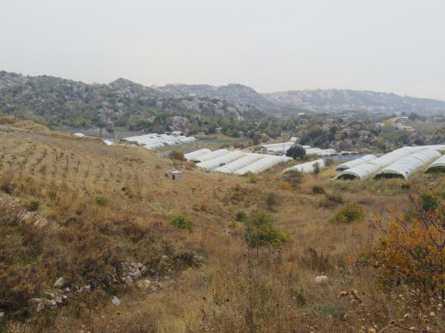 Fig. 5 - Serres installées sur une parcelle en terrasse près de Ouata El Laouz. Laurianne Brunel, 7.11.2013.