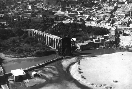 Fig.1 : Jardins et noria à Hama dans les années 1930 (© IFPO)