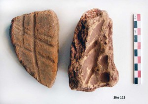 Fig. 8 : fragments de ruches (photo S. Müller Celka)