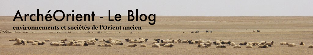 ArchéOrient - Le Blog