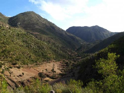 Figure 4 - Vue vers l'amont de la vallée de May Weini (voir Figure 2). ©Ninon Blond, 2014
