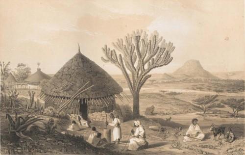 Figure 5 - Taye-Maoutcha (Tigray), gravure de Th.-Ch. Lefebvre, 1873. ©e-rara.ch, Swiss Electronic library.
