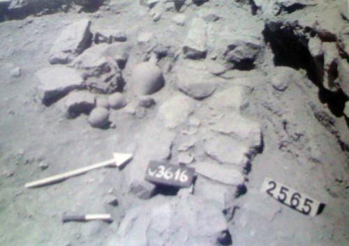 Fig. 2 : Arad, dépôts de fondation dans le locus 5103, chantier T, niveau II (Amiran, Illan & al. 1996, pl. 31).