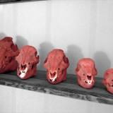 UNE_sortons les squelettes