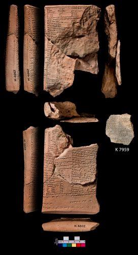 Fig. 3 : TBP 22a, 2ème tablette de la série physiognomonique mésopotamienne Alamdimmû (© CDLI)