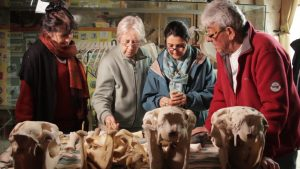 Crânes et mandibules (© ALTOMEDIA Productions, G. Frydman & P.-A. Paul)