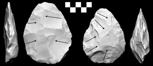 Figure 3. Two handaxes from the transitional Acheulean to Middle Palaeolithic site of Patpara in central India. Here showing the profiles accurately was crucial to illustrate that the plane of intersection between the two surfaces had been shifted to allow for the striking of invasive flakes (shown with arrows) (From Shipton in press).