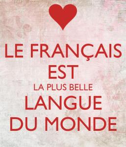 Idéologies linguistiques et didactique des langues
