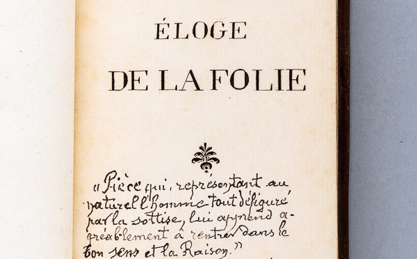 Entretien fictif élaboré entre une directrice de mémoire et une étudiante de M2 Littérature de langue française.