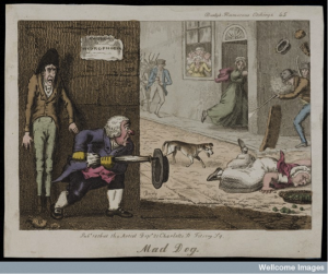 A mad dog on the run in a London street: citizens attack it as it approaches a woman who has fallen over. Coloured etching by T.L. Busby, 1826. Wellcome Library, London.