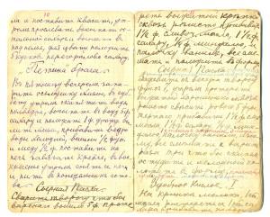Recipe for 'Petia's Braga' (Aleksandra Ippolitova)